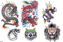 Тату дракона, тату голова совы, татуировка льва и тату волка в красочном каталоге тату